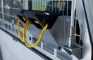 Minesite---Volkswagen-Amarok-Dual-Cab----Wheel-Chocks